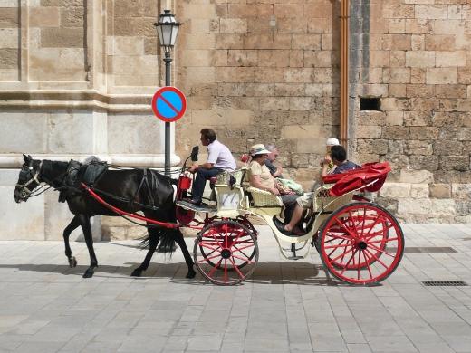 Baños Arabes Mallorca:Banos Arabes Palma de Mallorca